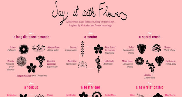Flowers For Nine Different Types Of Relationships What They Mean