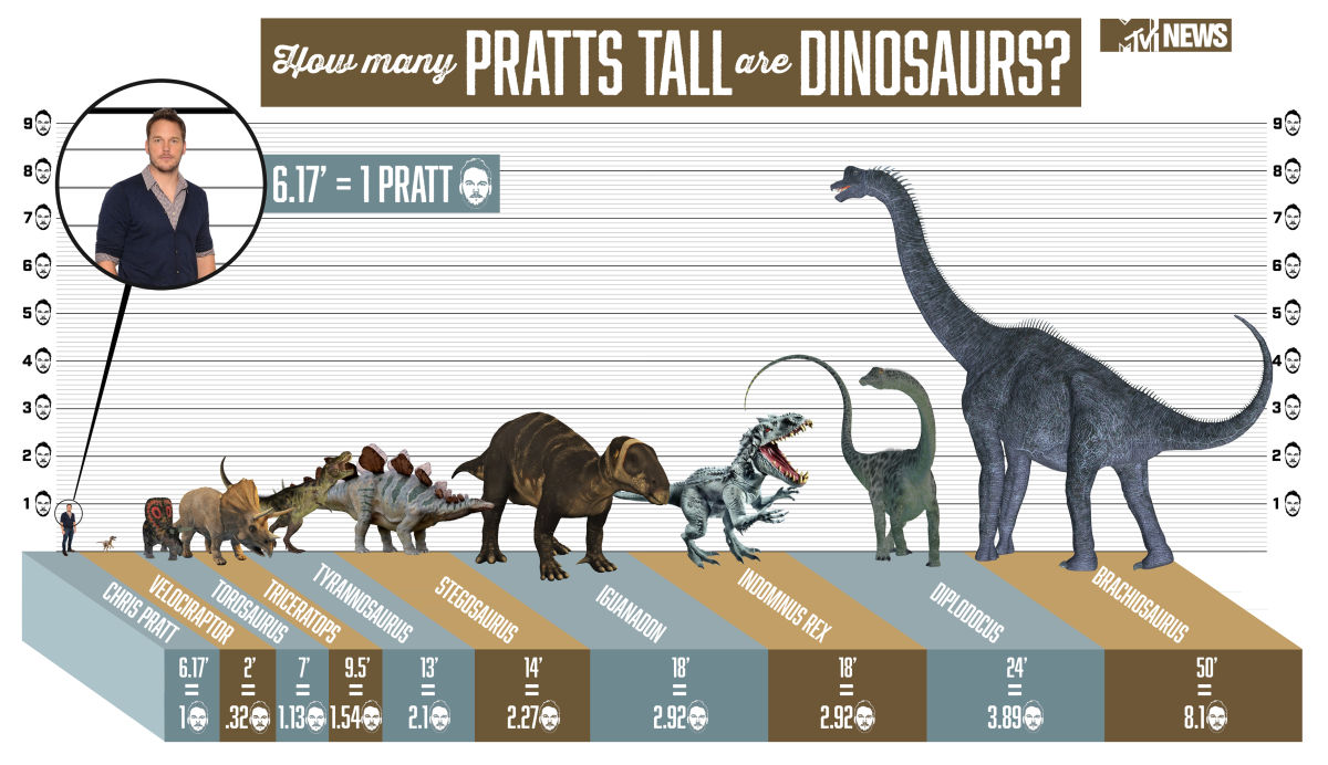 The Height Of 'Jurassic World' Dinosaurs, With Chris Pratt ...