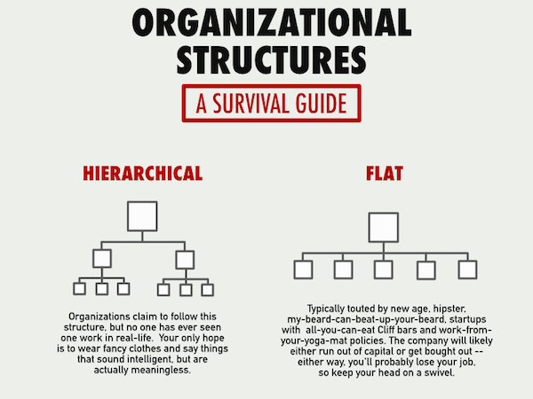 infographic  six truthful  funny organizational structures