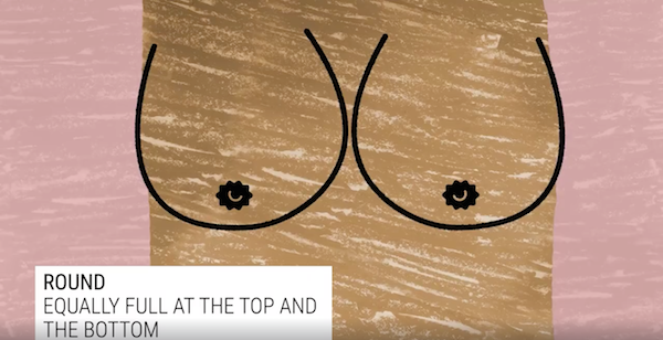 Watch The Seven Types Of Boobs In The World - Designtaxicom-2126