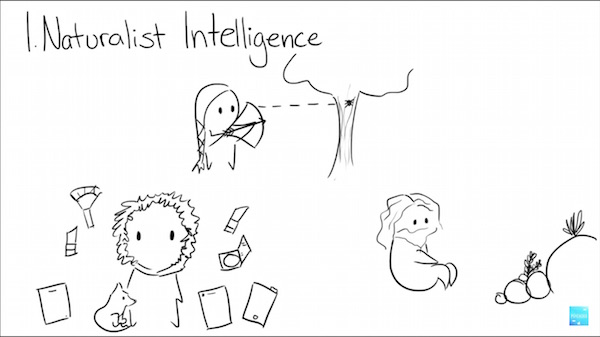 watch  nine types of intelligence  which do you posses