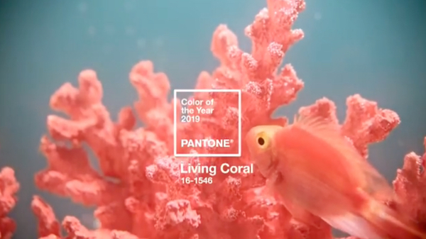Studio's PANTONE Concept Predicts 'Bleached Coral' As 2020 Color Of The Year