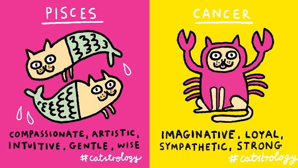 Star Signs Reimagined As Cats Might Finally Have You Mewsing Over