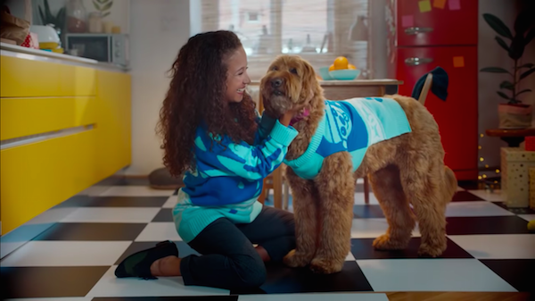 cesars christmas sweaters designed by dogs let you twin with your pup designtaxicom