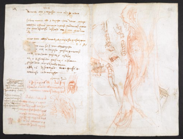 Leonardo Da Vinci's Epic Notebook Is Now Available To View For Free