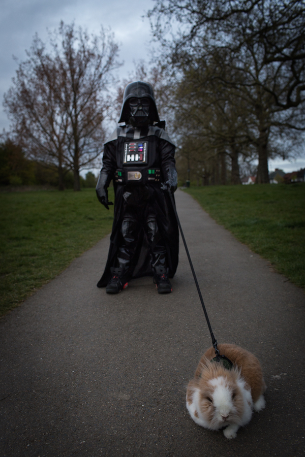 Photographer Takes Adorable Photos Of His Toddler Dressed As Darth Vader