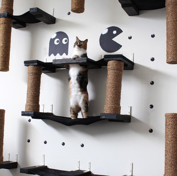 Unique Cat Furniture Turns Dull Wall Spaces Into Lively