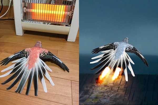 Innocent Parrot By A Space Heater Gets Photoshop Into