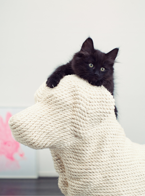 For Cat Lovers An Adorable Dog Shaped Scratching Post For
