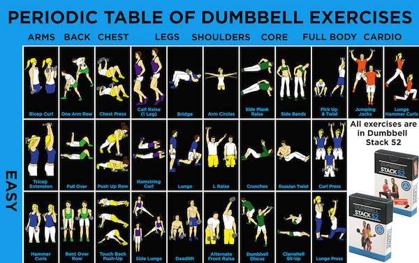 Infographic A Comprehensive Periodic Table Of Dumbbell Exercises