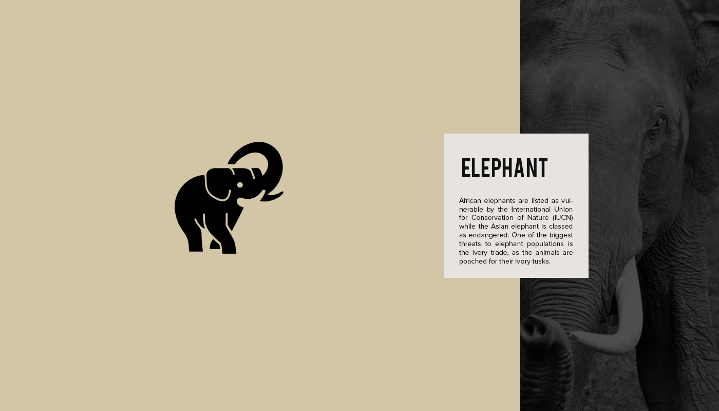 Endangered Animal Logos Made With Negative Space Color
