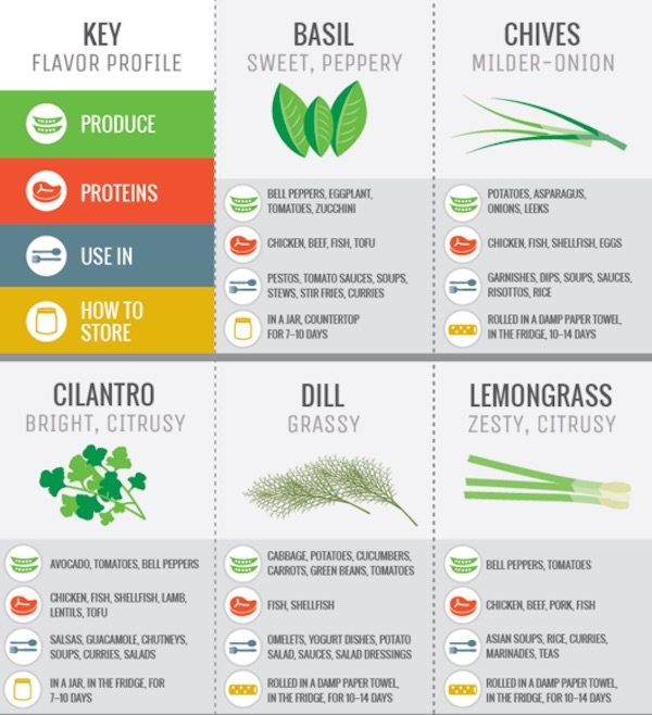 A Guide to Cooking With Herbs - baycare.org