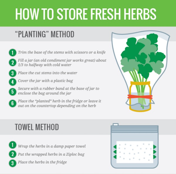 The Ultimate Guide to Cooking with Fresh Herbs   Taste of Home
