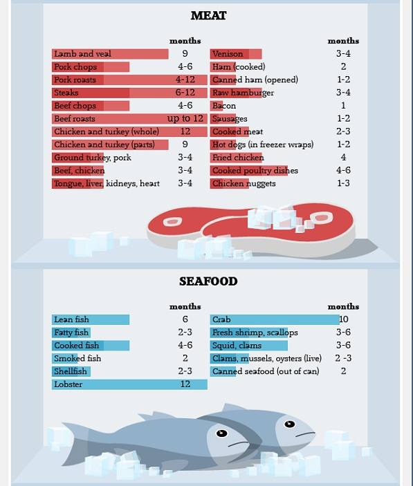 Infographic: How Long Can You Store Food In The Freezer?