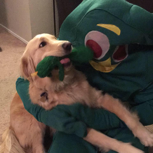 Owner Dresses As Dog S Favorite Toy