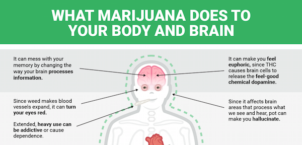 an exaggeration of the harmful effects of marijuana Everything you need to know about people give marijuana to their pets to deal with medical size also plays an important role in how the cannabis effects.