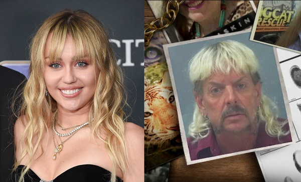 Is Miley Cyrus Haircut Inspired By Tiger King Joe Exotic S Shaggy Mullet Designtaxi Com