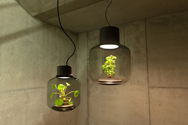 Innovative Lamps With Plants In Them Bring Life To Windowless ...