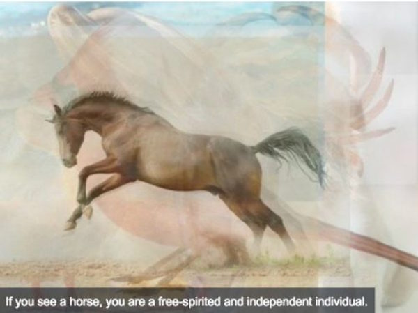 This Test Reveals Your Personality Based On The Animal You