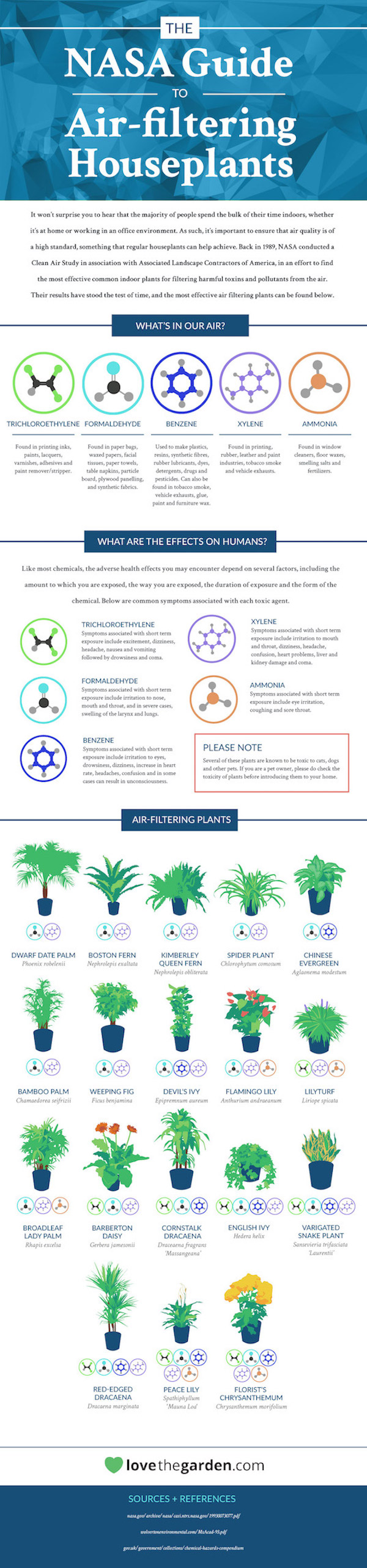 Infographic 18 houseplants that naturally purify the air for Best air filtering houseplants