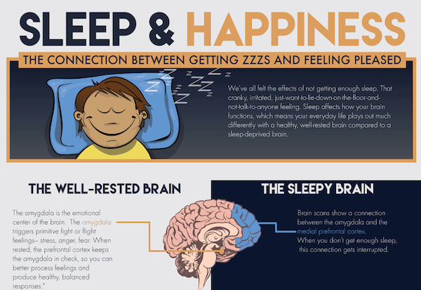 relationship between creativity and sleep Both visually and verbally creative people report this type of sleep.
