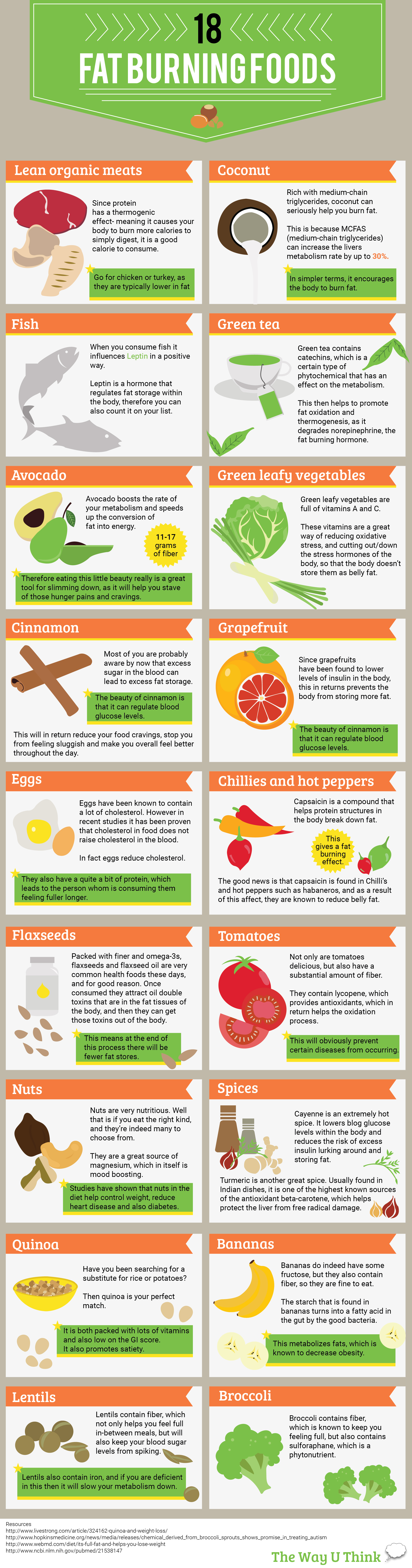 Infographic 18 Fat Burning Foods For Health Conscious