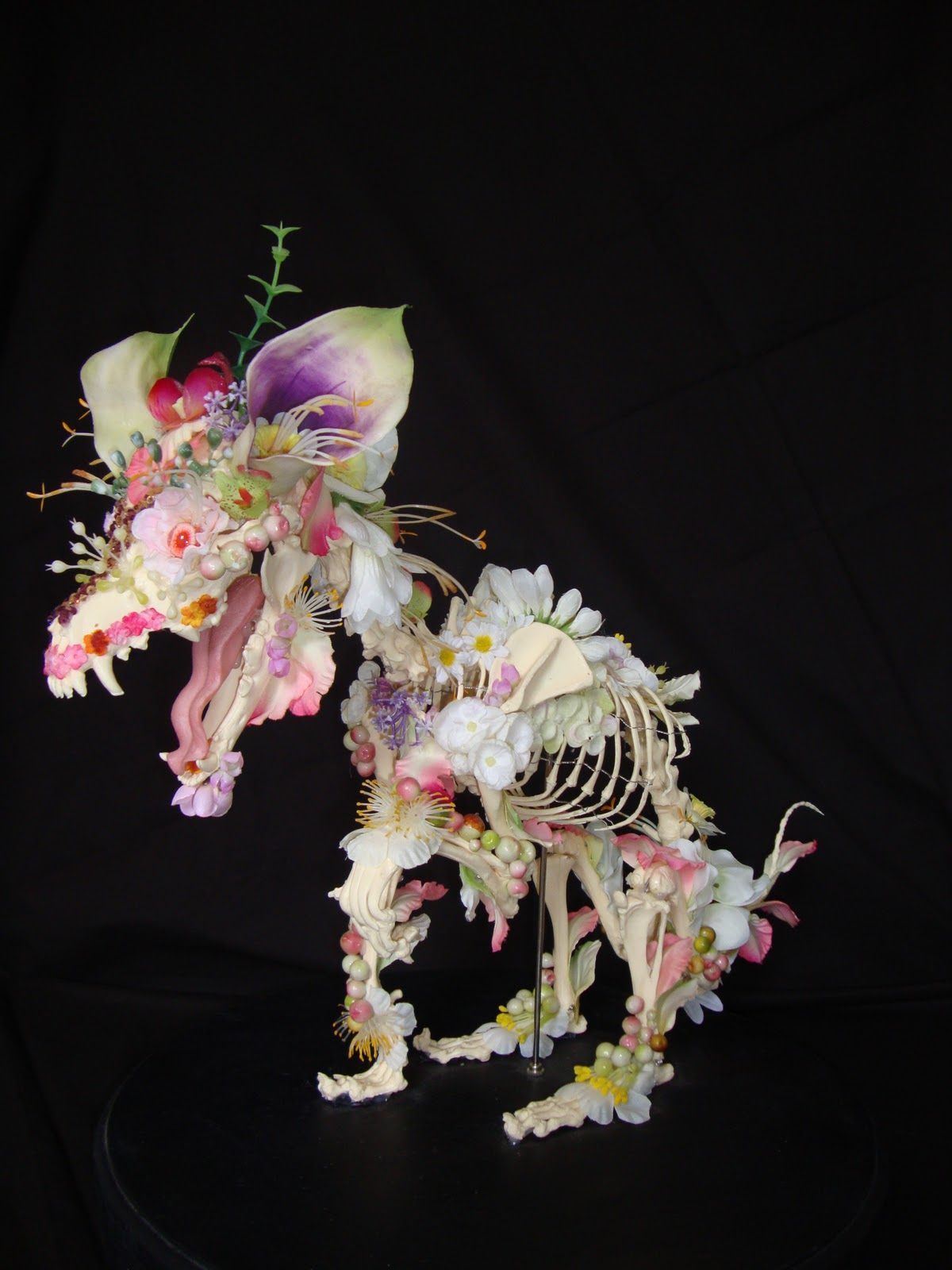 Amsterdam-based sculptor Cedric Laquieze creates flower-skeleton sculptures made from cat and dog skeletons and 'decorated' with artificial flowers: