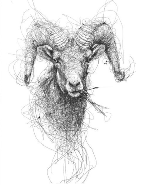Continuous Line Drawing Of Animals : Realistic portraits of animals drawn with scribbles