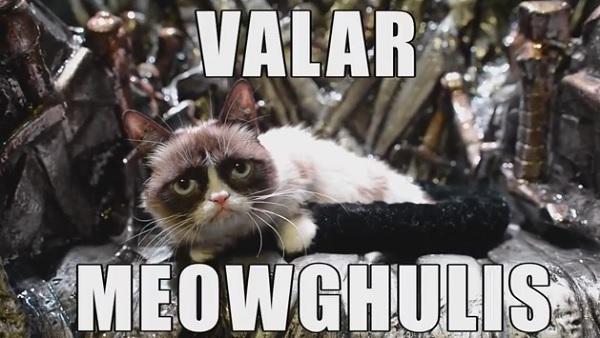 Grumpy Cat Claims The Iron Throne At Sxsw Designtaxi Com