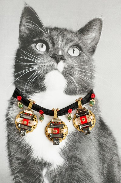 In 'Catvertisements', Cats Wearing Jewelry