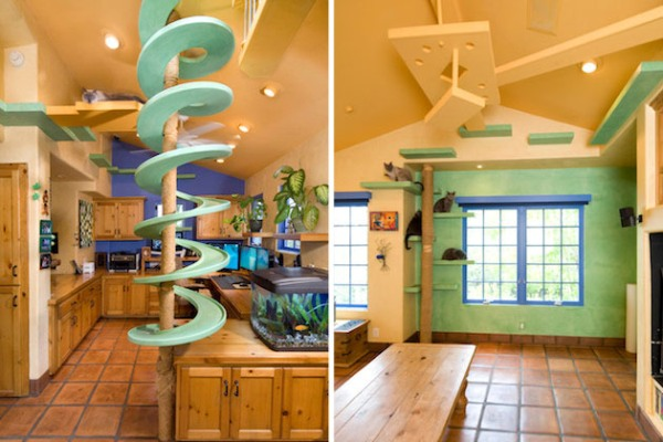 One homeowner in Goleta California loves his 18 pet cats so much that he turned his house into a feline wonderland to keep them comfortable and safe. & A Fantastic House With Custom-Made Tunnels And Pathways For Cats ...