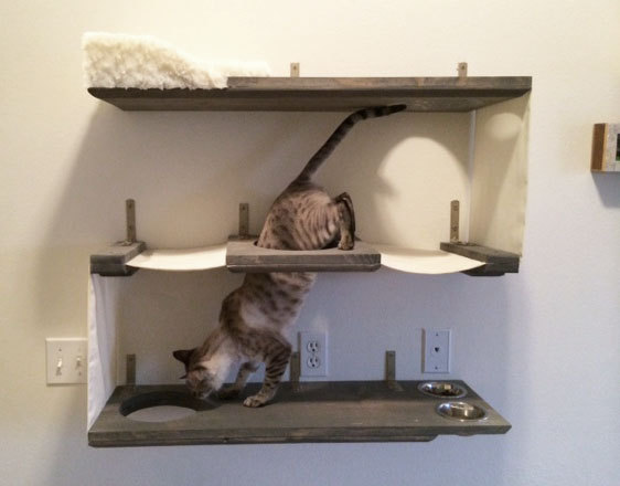 a trio of shelves that is designed to be a mini apartment for a cat. Black Bedroom Furniture Sets. Home Design Ideas
