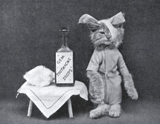 Adorable, Amusing Vintage Photographs of Cats Doing Everyday Tasks