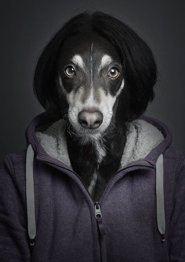 Dogs In Human Clothes