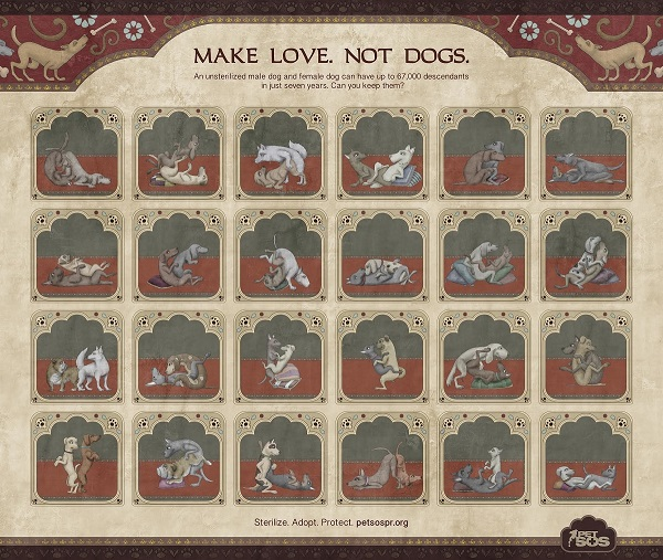 news Doggy Karma Sutra Ad Reminds Viewers To Sterilize Their Pets ad x.