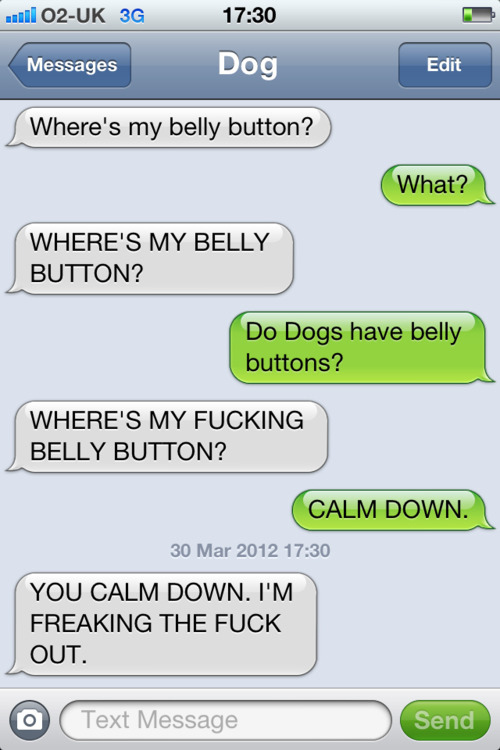 a man s hilarious text conversations with his dog