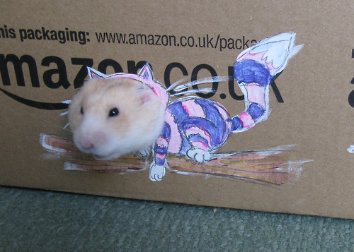 Funny Images Of A Hamster Playing Dress Up With Cardboard