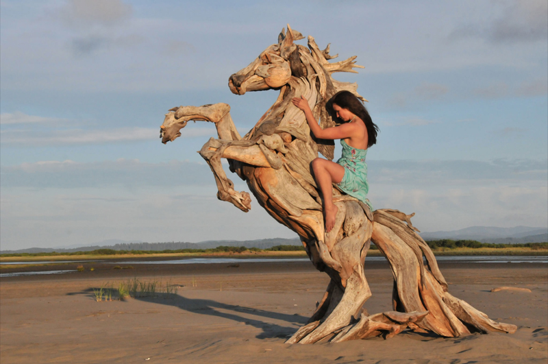 Driftwood Sculpture an Addition to the Innovative Eco Art