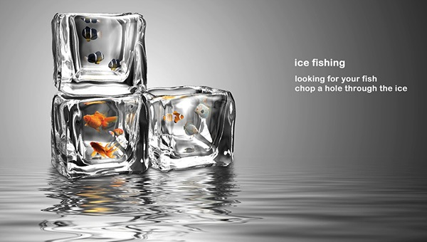 Forget the aquarium keep fish in ice cubes instead for How to make ice in a fish tank