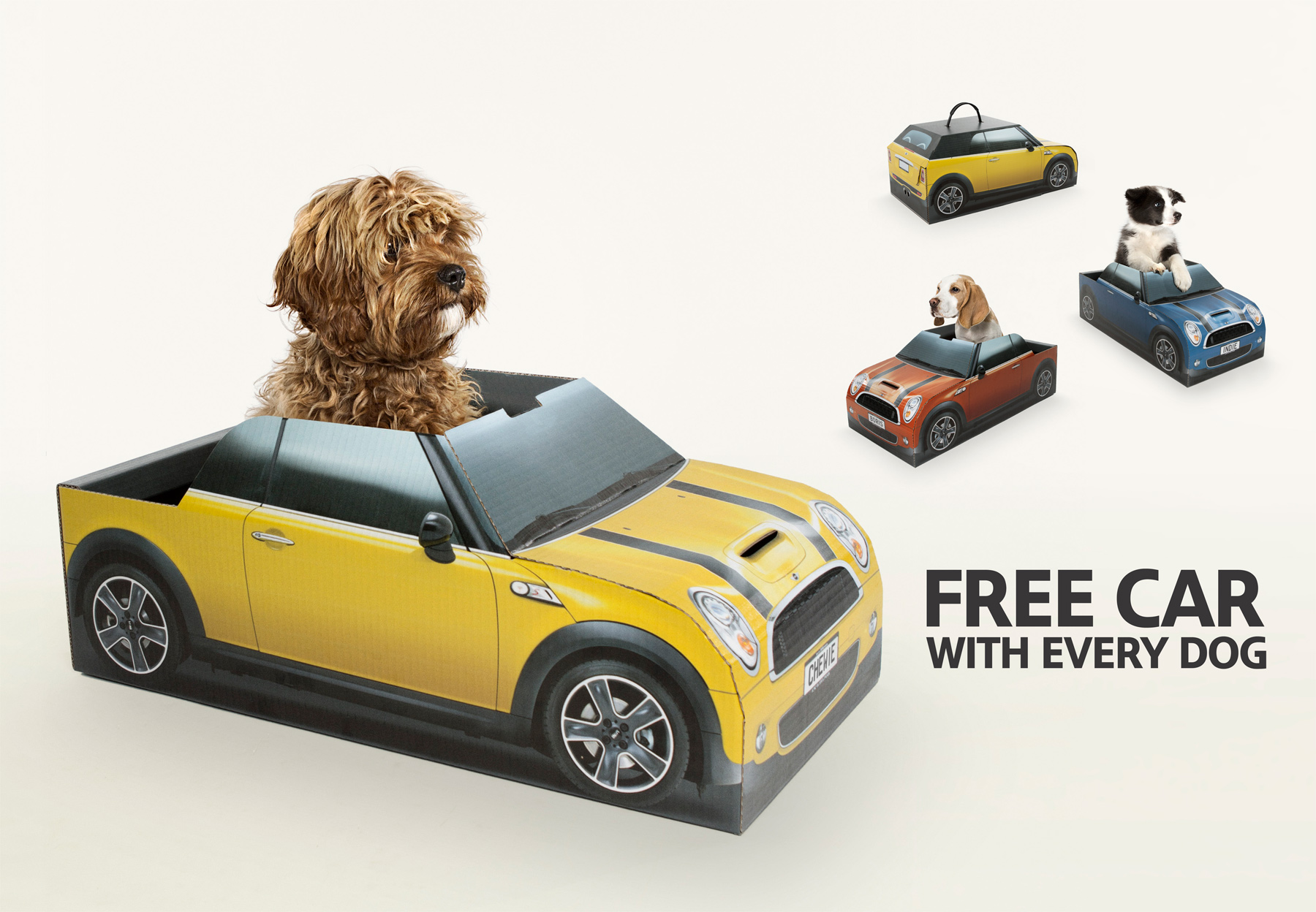 Mini Gives Newly Adopted Puppies Free Topless Car As Dog