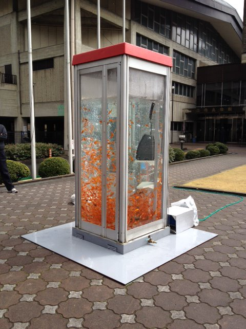 Goldfish Tank Phone Booths Pop Up Across Japan -5807