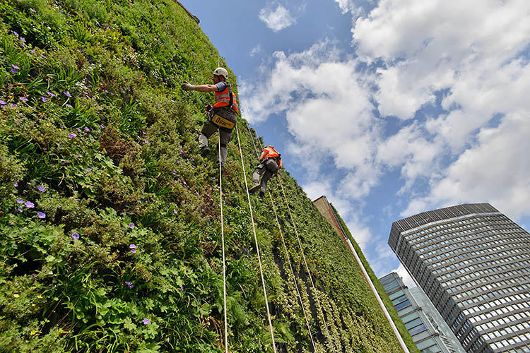 The Largest Vertical Garden In London Is Home To 10 000