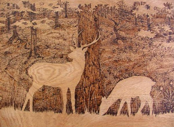 artist creates gorgeously detailed illustrations on wood with a soldering iron. Black Bedroom Furniture Sets. Home Design Ideas