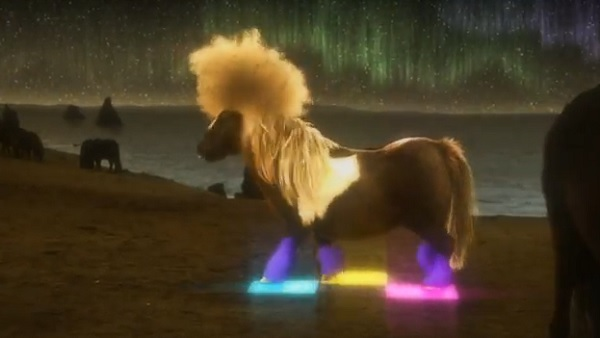 In The Uk Dancing Shetland Pony Goes Viral In Ad Campaign