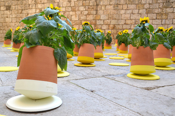 A Unique Flower Pot That 'Rolls' In Order To Get More Sunlight -  DesignTAXI.com