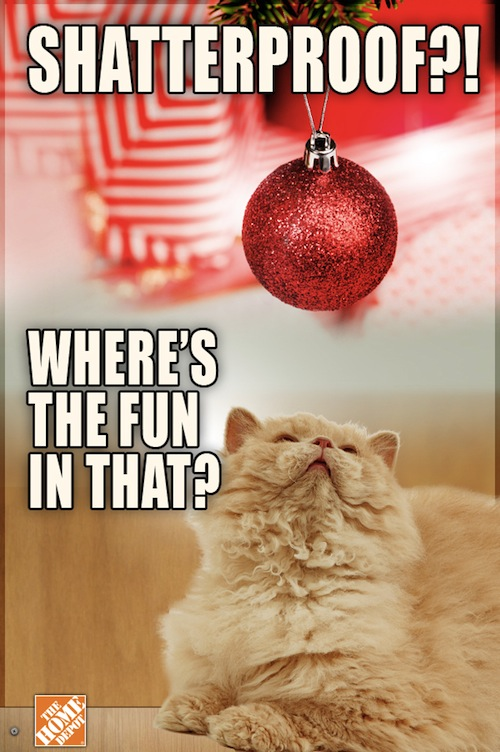 1 a grumpy cat complains about the holiday season designtaxi com