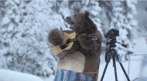 Samsung S Hilarious New Ad Shows Bears Doing Laundry Like