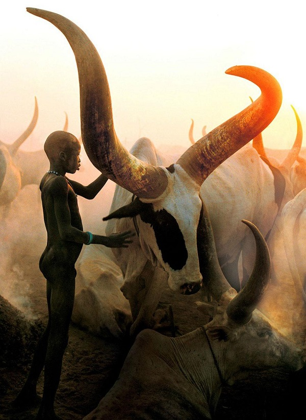 Stunning Images Of The Dinka People Of Southern Sudan And Their Way Of Life