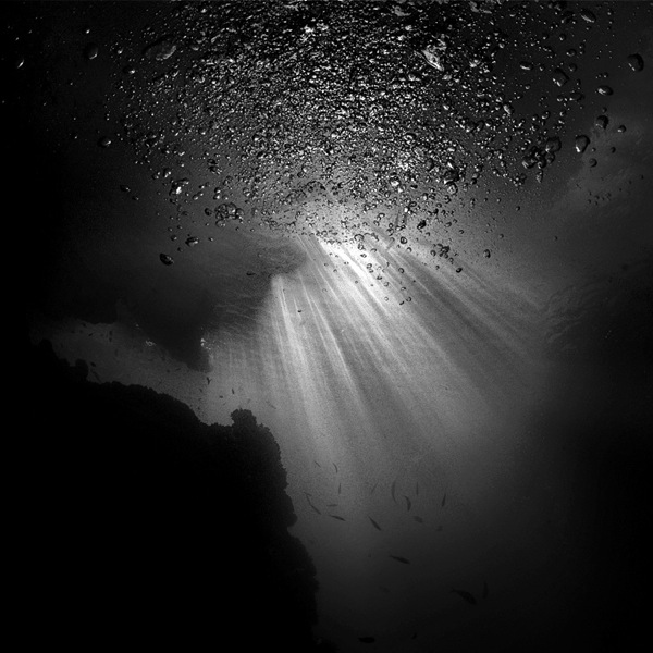 dark brooding underwater photography like you�ve never