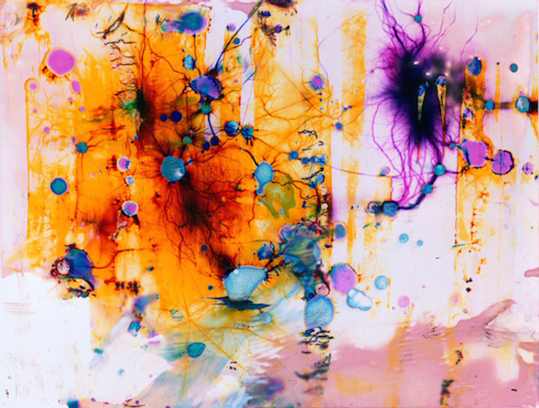 Vibrant Patterns Form On Images Exposed To A Deadly Electrical Voltage - DesignTAXI.com